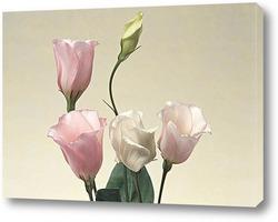 Flower383