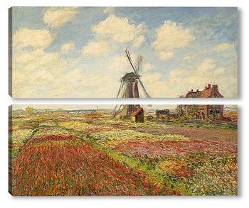 Модульная картина Поле тюльпанов в Голландии
