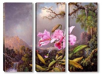 Модульная картина Исследование Орхидеи