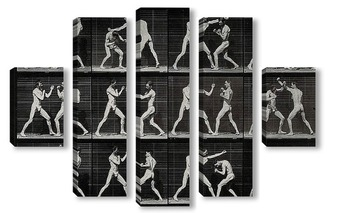 Модульная картина Мужчины боксёры