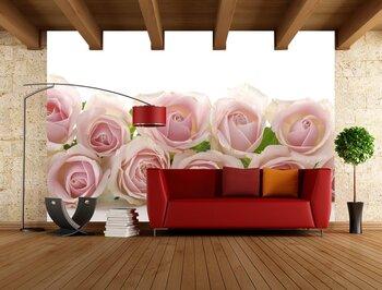 rose-06011019